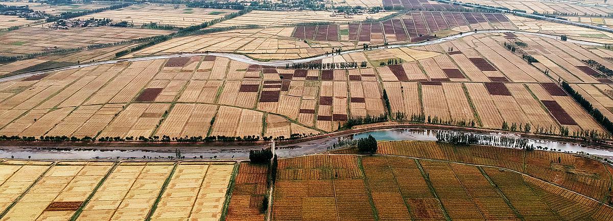 新華網航拍世界灌溉工程遺産:寧夏引黃古灌區