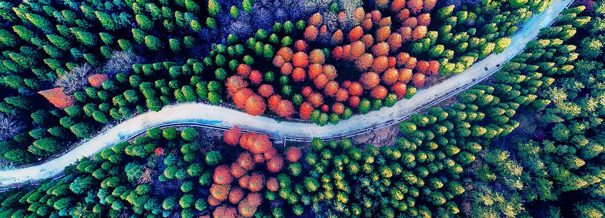 """【航拍】震撼!有一種美叫""""黃柏山的秋天"""""""