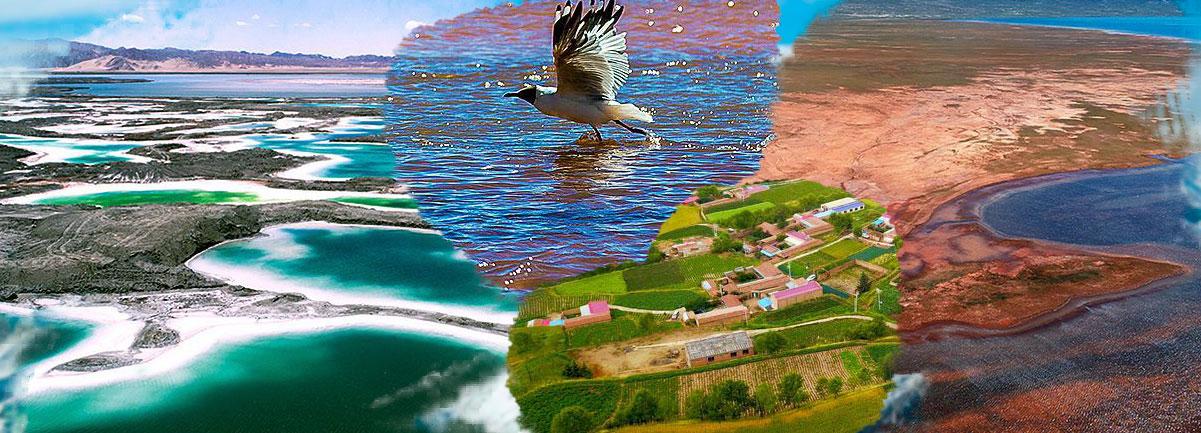 這些航拍圖告訴你青海美景的正確打開方式