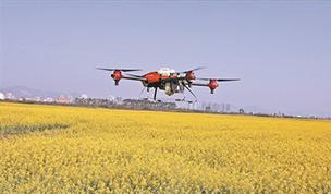 油菜管護用上無人機