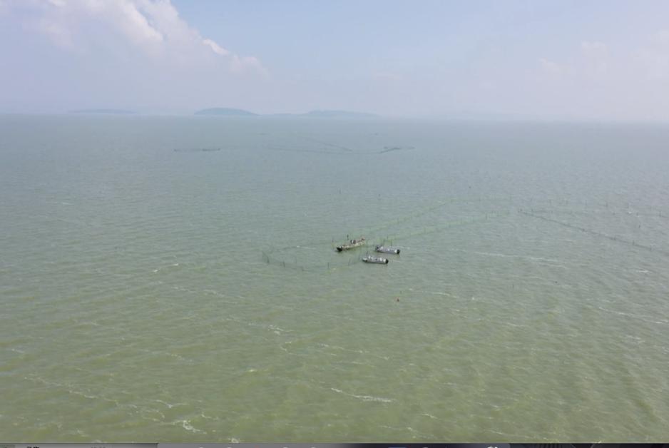 """【""""飛閱""""中國】太湖:魚肥蝦美正當時"""