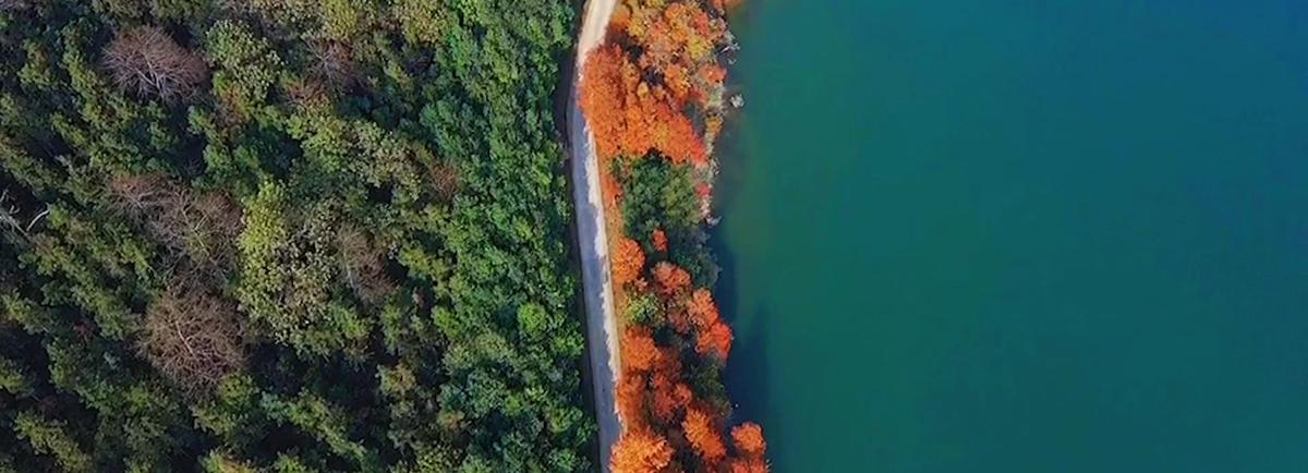 冬日太平湖 打翻的調色板