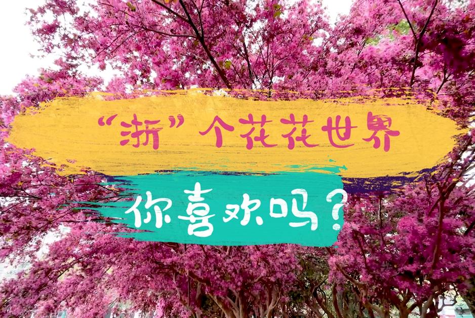 """【""""飛閱""""中國】""""浙""""個花花世界,你喜歡嗎?"""