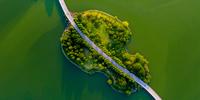 合肥翡翠湖公園:秋已至 夏未央
