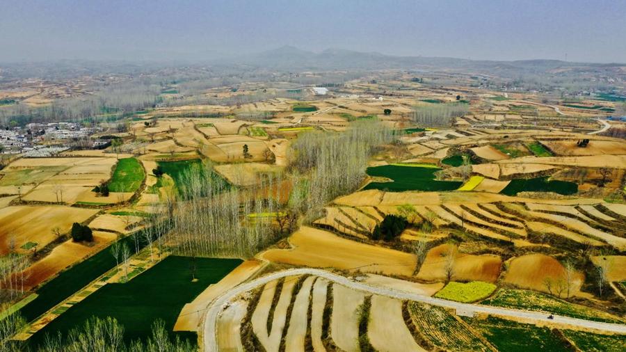河南魯山:坡耕地治理富美鄉村