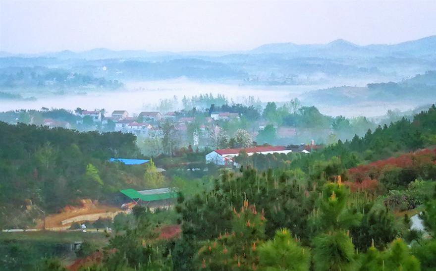 初夏武漢陳田村