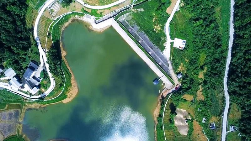 新華鷹丨治理保護讓水庫更美