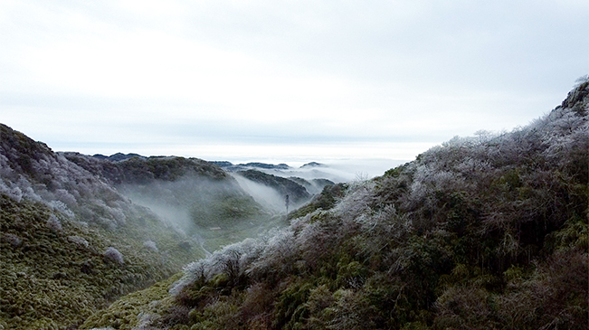 無人機航拍重慶金佛山 漫山霧凇如畫