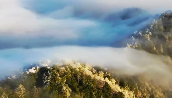 """【""""飛閱""""中國】雪霽神農架 你絕對沒有見過的雲海景觀"""