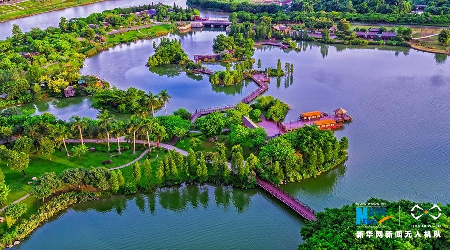 大地樂章|航拍廣州海珠湖和39條河涌組成鳥的天堂