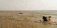 """【""""飛閱""""中國】江蘇廣袤灘涂 大自然與人和諧共處的家園"""