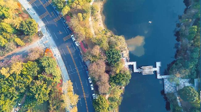 【視頻】春寒料峭 無人機帶你看花城春意