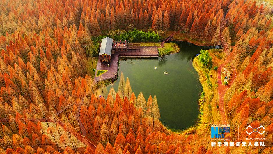 無人機之旅|潘安湖 太湖 白馬湖 愛上江蘇的航拍在這兒