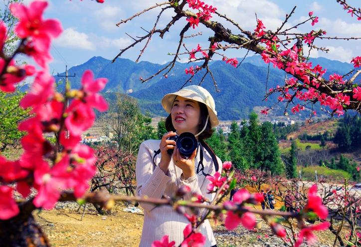 無人機之旅|南粵桃花朵朵開