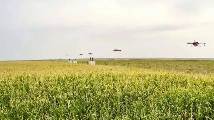 大疆VS極飛 相愛相殺的無人機植保對手