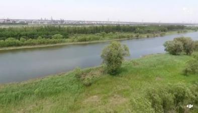 航拍天津北辰北運河沿岸 生態治理成效顯著
