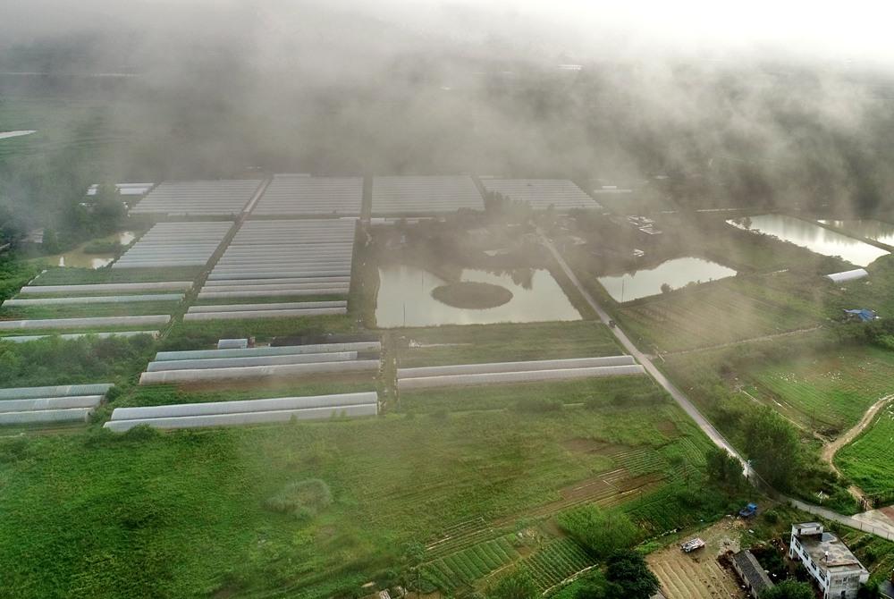 航拍:江淮平原梅雨至 雲卷雲舒氣象千