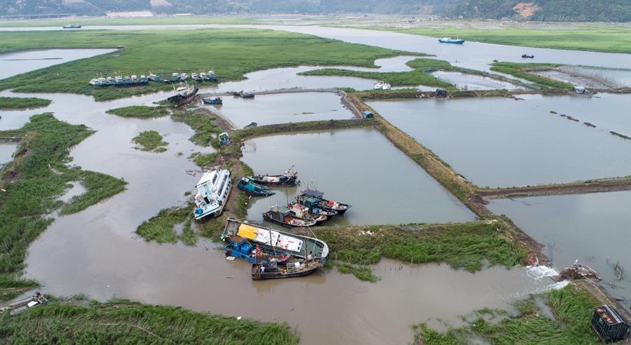 直擊閩東災區牙城鎮:海上養殖場受重創 漁民忙重建